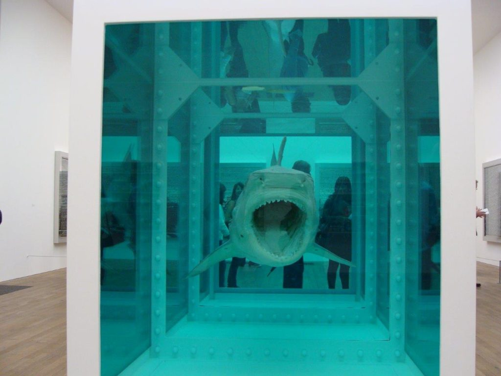 Damien Hirst, Shark Exhibition, The Physical Impossibility of Death in the Mind of Someone Living