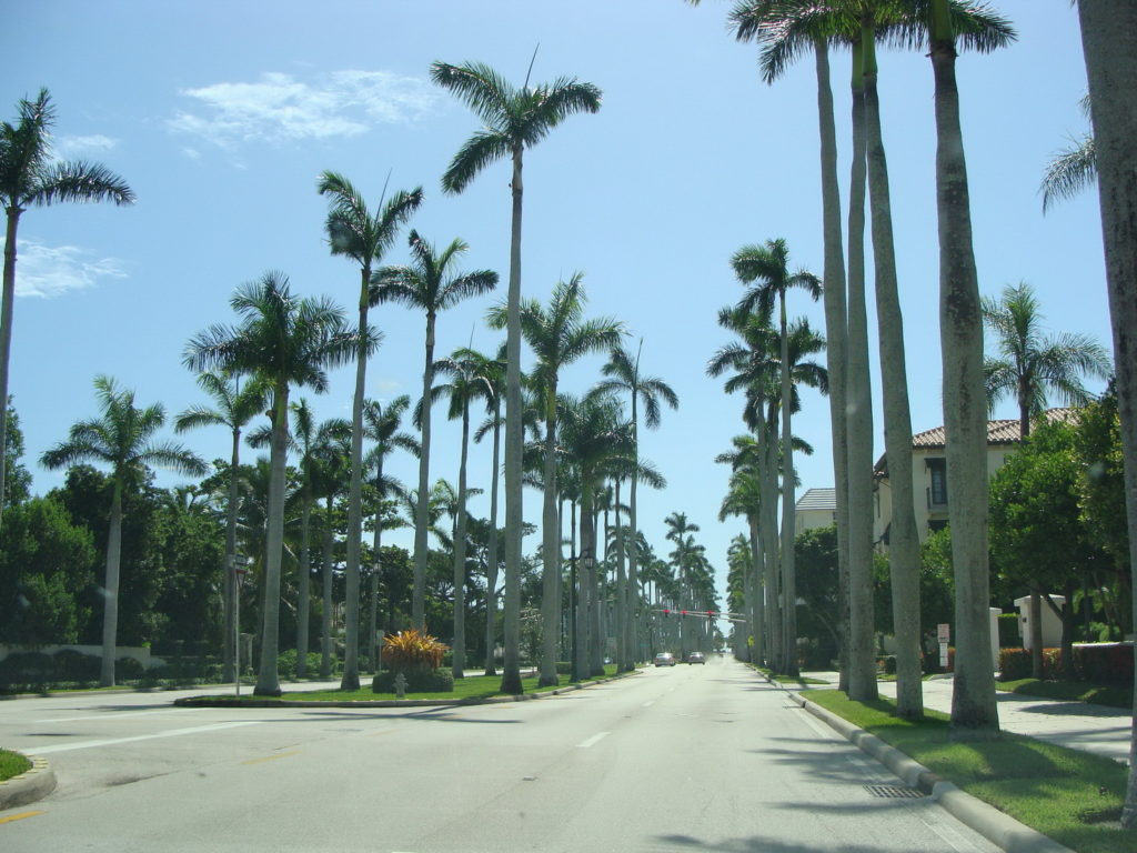 Florida, Palms, Blumil wheelchair, accessibility rating, wheelchair friendly Florida, road trip around the state