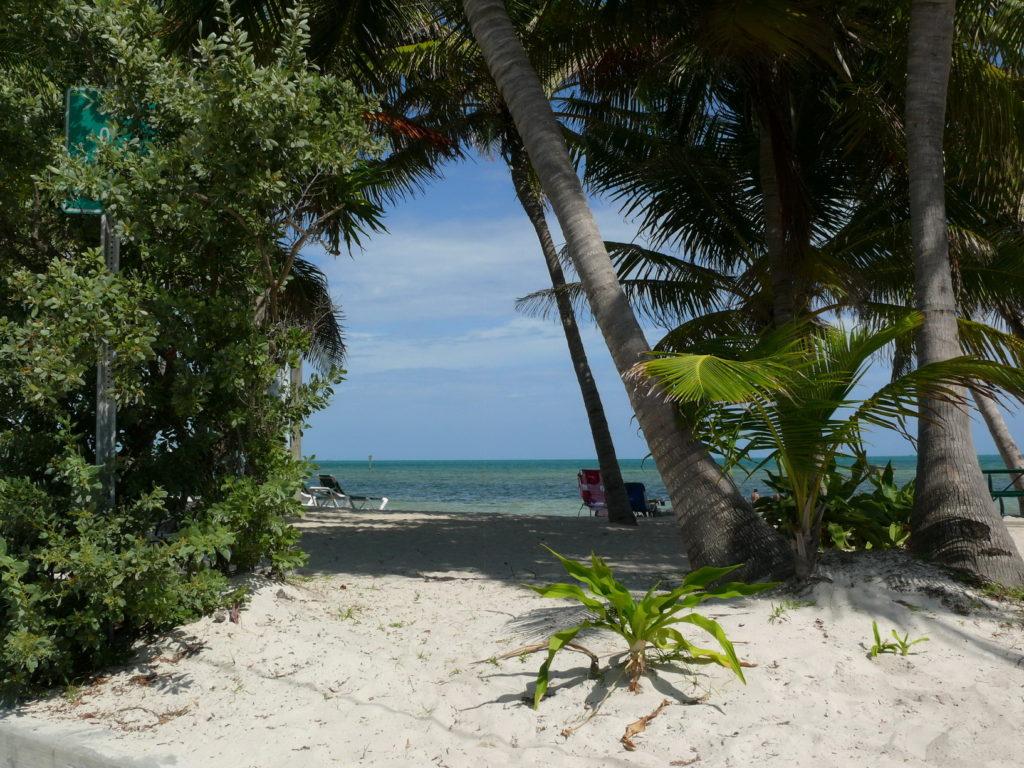 Beach life, accessible travel, Key west beach, Florida, USA, Blumil wheelchair