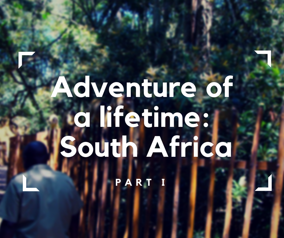 Adventure of a lifetime- South Africa, accessible travelling, travel with a wheelchair
