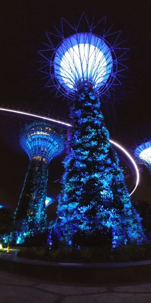Singapore, gardens by the Bay, accessible travel, wheelchair friendly travel, electric wheelchair