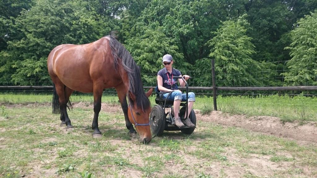 Blumil electric wheelchair, Blumil users, all-terrain wheelchair